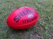 Sherrin Lyrebird Full Size ball, taken 2014